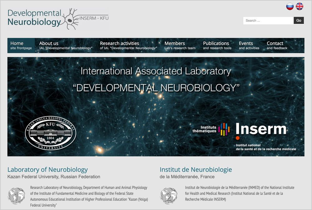 "International Associated Laboratory ""Developmental Neurobiology"""